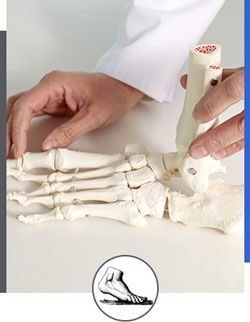 Biomechanical Exams Near Me in Walnut Creek CA - Bay Area Foot and Ankle